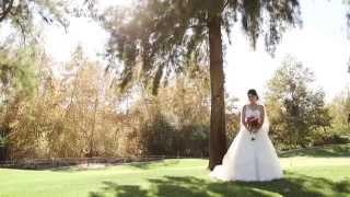 Sahar & Shervin's Wedding