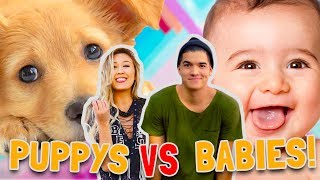 PUPPIES vs BABIES! (CUTE CONTEST)