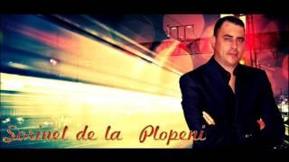 SORINEL DE LA PLOPENI -  CONSTANTINE CONSTANTINE NOU 2016