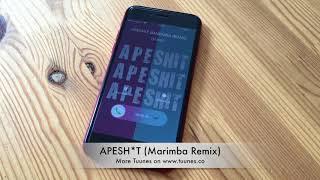 APESHIT Ringtone - The Carters Tribute Marimba Remix Ringtone - iPhone & Android Download