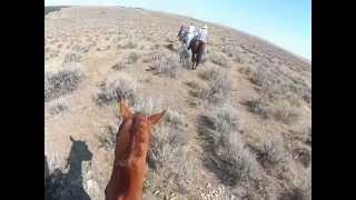 Little Bighorn Battlefield on horseback, Crow Reservation...Montana Territory 2012