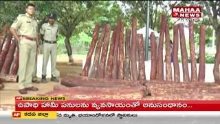 Police Seized Red Sandalwood Logs in Tirupati   Mahaa News
