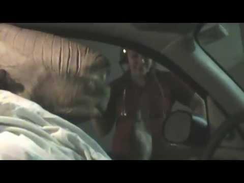 STONE COLD E.T. Fan Appreciation DRIVE-THRU