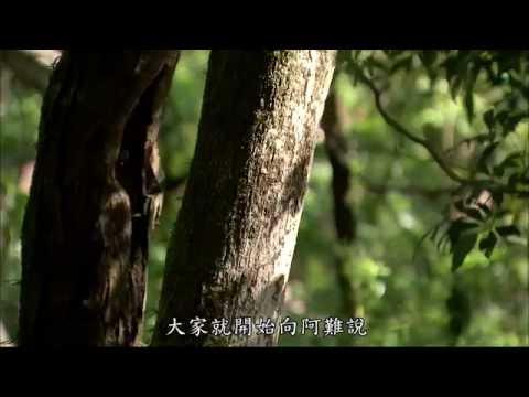 04 悲智印記第199集大藏經