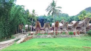 ... around Rantepao, Tanah Toraja, central Sulawesi, Indonesia