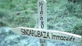 Sindarubaza immaculee
