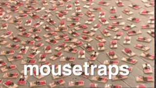 JACKASS MOUSE TRAP