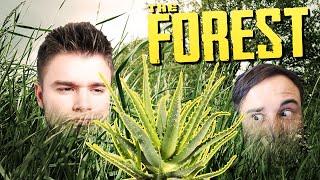W POSZUKIWANIU ALOESU!   The Forest [#17] (With: Dobrodziej)