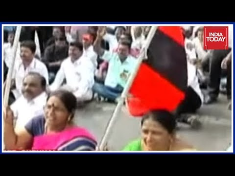 Xxx Mp4 TN Oppn Holds Another State Wide Protest Against Bus Fare Hike 3gp Sex