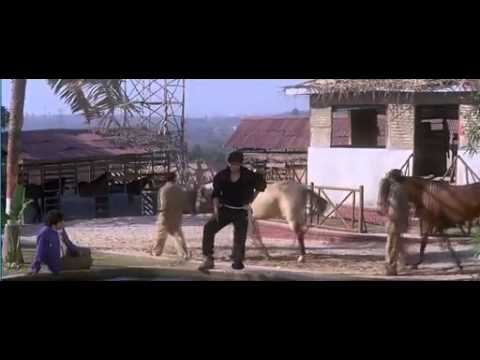 Xxx Mp4 Koyla Full Movie HD 3gp Sex