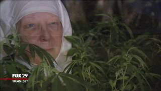 Nuns Growing Weed To Heal The World-Sisters Of The Valley