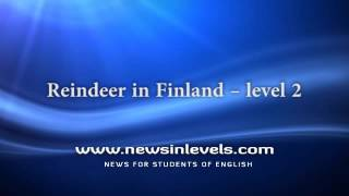 Reindeer in Finland – level 2