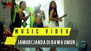 Janda Dibawah Umur(Jamur)_Aldo Smr ft Tomyremix17_Cover AngellBert