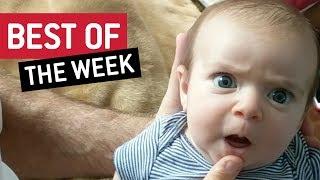 Best Videos Compilation Week 1 September 2017 || JukinVideo