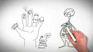 Understanding Pain: Brainman chooses