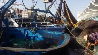 La pêche de poissons à Mahdia -Tunisie-رحلة كاملة لصيد السّمك بالمهدية تونس