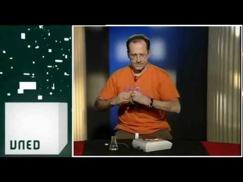 20 01 2012 CIENCIA EN ACCIÓN. Principio de Arquímedes.