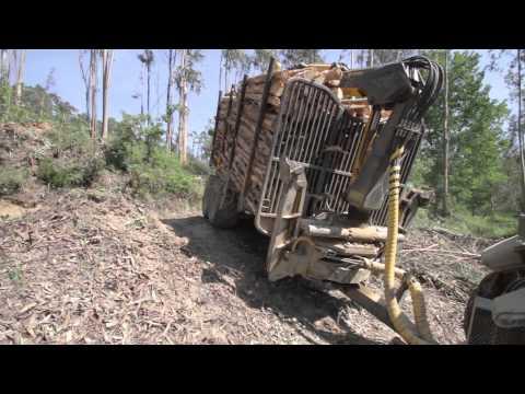 COSTA forestry 4WD trailers and cranes Reboques e gruas florestais COSTA