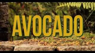 Jah9 - Avocado (Official Video)