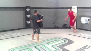 Andrei Arlovski This is Sparta Kick thru John Dodson