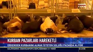 Habertürk-Kurban pazarları hareketli