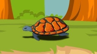 English Poem for kids - A Little Turtle