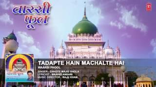 TADAPTE HAIN MACHALTE HAIN (Audio):CHHOTE MAJID SHOLA || Islamic Songs 2016 || T-Series IslamicMusic
