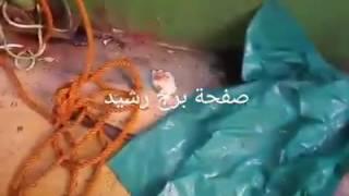 فيديو مركب رشيد الغارق من الداخل بعد إنتشاله