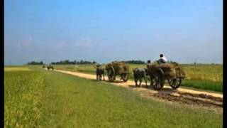 Bangladesh Village Photo