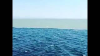 ronibali - Allah Maha Kuasa - Air Laut Yang Terpisah
