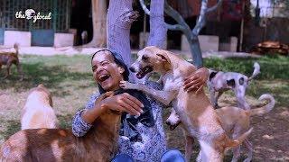 اعرف قصة هالة أم الحيوانات: عاشت عشان تنقذ حيوانات الشارع وتعالجهم في بيتها بدون مقابل