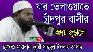 Hafez Kari Maulana Saidul Islam Asad. Quran Telawat