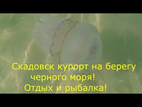 рыбалка на море херсона