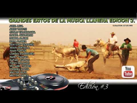 Musica llanera Solo éxitos edición 3.
