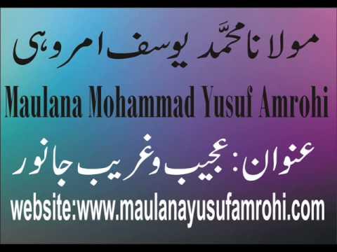 Maulana Yusuf Amrohi AJEEB O GHAREEB JANWAR