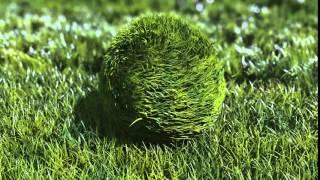 Grass Ball Logo reveal Cartoon 3D Animation