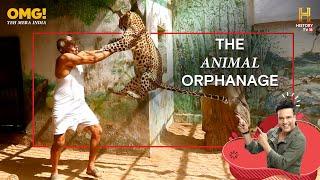 The Animal Orphanage - जानवरों का अनाथालय - OMG! Yeh Mera India - HISTORY TV18