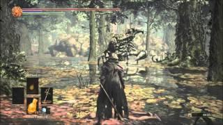Dark Souls 3 Fallen Knight Armor Location!