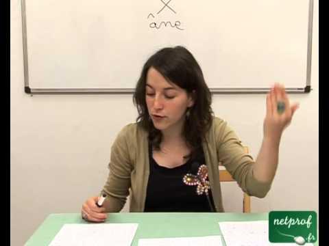 Dissertation Philosophie Terminale S Libert