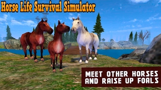 🐎👍Horse Life Survival Simulator - By PlayMechanics Simulation - iTunes/Android