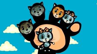 Papa Finger 🖐 Nursery Rhyme |Three Kittens | Songs for Kids