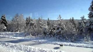 Viagem à Escandinávia (Dinamarca e Noruega)