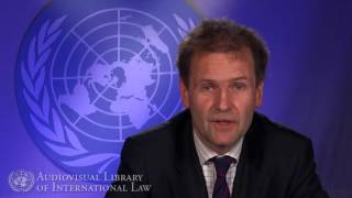 Markus Schmidt on the Universal Periodic Review of the Human Rights Council
