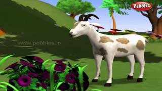 The Clever Goat | পশু গল্প | 3D Moral Stories For Kids in Bengali | Animal Stories in Bengali