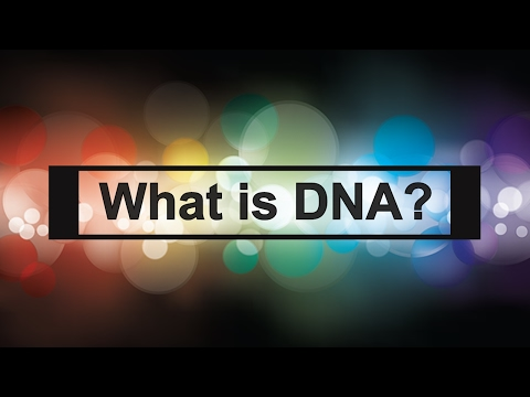 What is DNA in 3 easy steps? by sciencelab