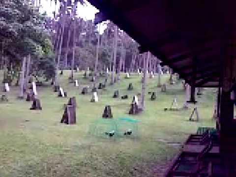 Idol PA s farm in San Pablo