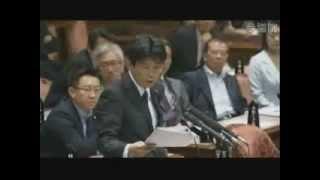 06.13 参議院予算委員会 山本一太議員(自民)