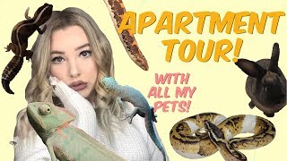 TOUR OF MY PERSONAL ZOO! (Apartment tour + 26 animals!)