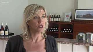 Economic impact of Oregon wine soars