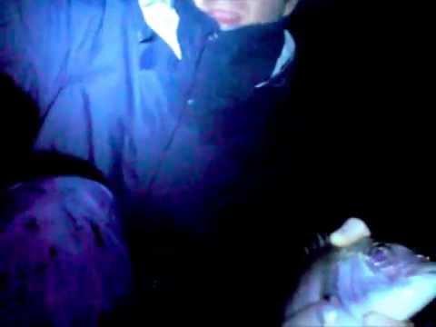 Pesca del sargo a natural casting 1